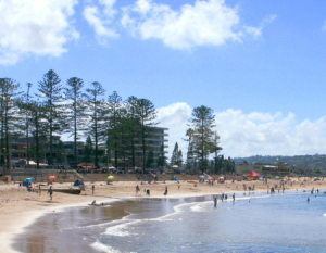 Dee Why Glass